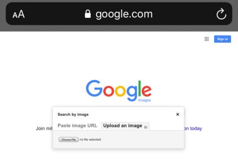 site- ul dating căutare imagine inversă